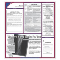 State Labor Law Poster